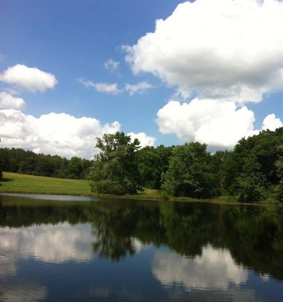 0 Middle Fork Lane, Carnesville, GA 30521 (MLS #6049331) :: RE/MAX Paramount Properties