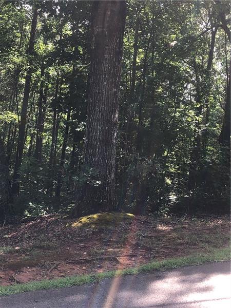 0 Lot#4 Country Hills Rd., Ellijay, GA 30540 (MLS #6052011) :: The Heyl Group at Keller Williams