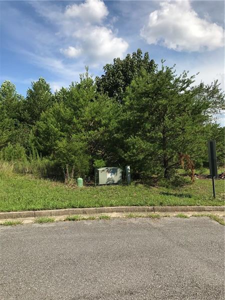 406 Deer Run Lane, Rockmart, GA 30153 (MLS #6054719) :: The Zac Team @ RE/MAX Metro Atlanta