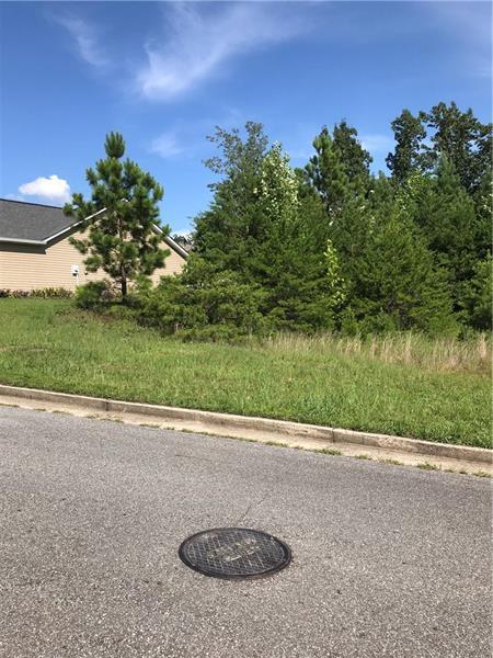 408 Deer Run Lane, Rockmart, GA 30153 (MLS #6054755) :: The Russell Group