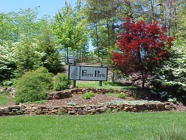 14 Fern Park Drive, Dawsonville, GA 30534 (MLS #6058479) :: The Cowan Connection Team