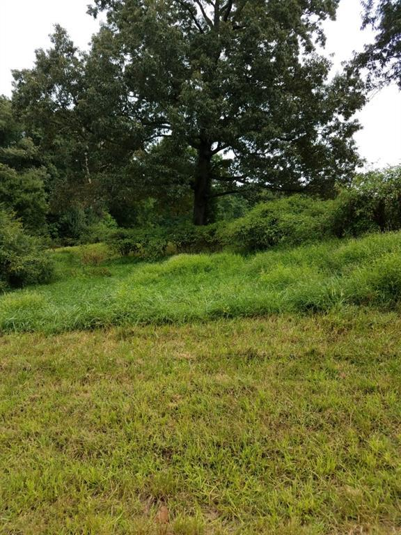 Lot 1 Strada Del Vino, Dahlonega, GA 30533 (MLS #6061436) :: North Atlanta Home Team