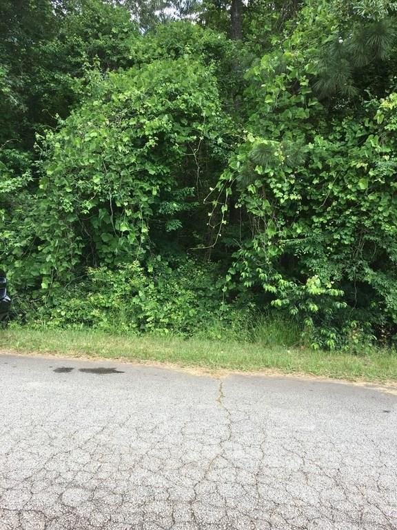 0 Lee Road, Stockbridge, GA 30281 (MLS #6065930) :: The Cowan Connection Team