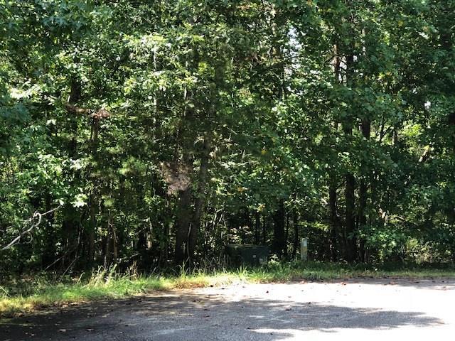 000 Young Deer Drive, Dahlonega, GA 30533 (MLS #6071421) :: The Cowan Connection Team