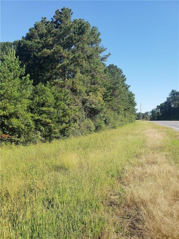 Lot 3 Hwy 53 Spur - Photo 1