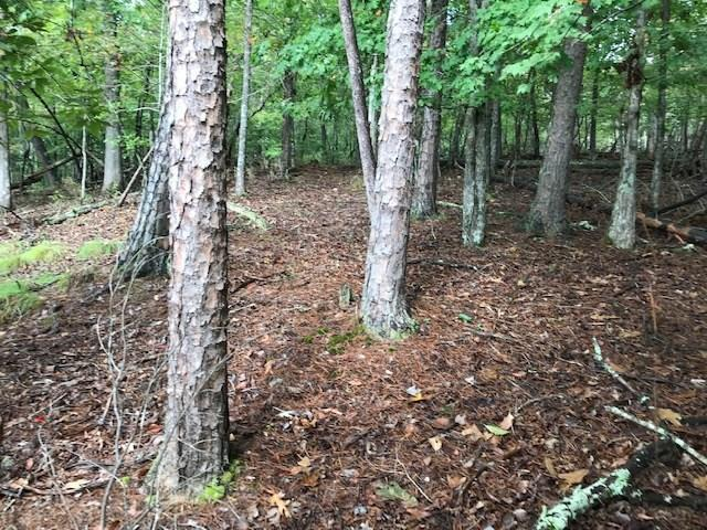 Lot 56 Old Stamp Mill Road, Dahlonega, GA 30533 (MLS #6080507) :: Iconic Living Real Estate Professionals