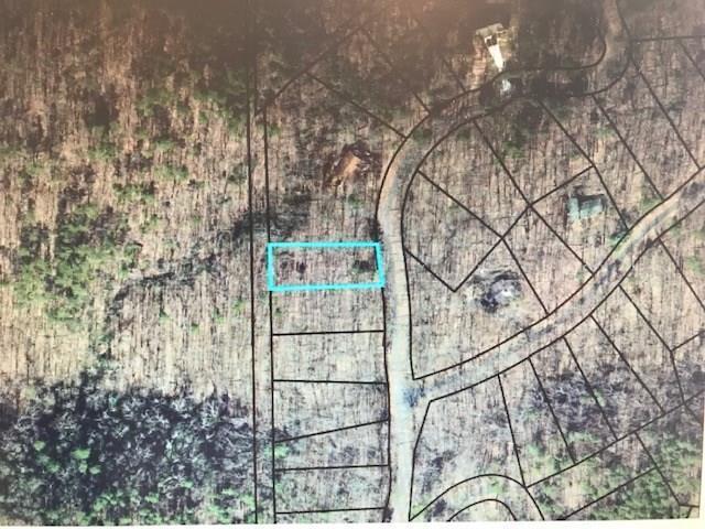 L1490 Briar Vista, Jasper, GA 30143 (MLS #6083633) :: RE/MAX Prestige
