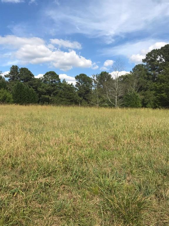 0 Center Hill Church Rd. Tract 4 Road, Loganville, GA 30052 (MLS #6089155) :: Path & Post Real Estate