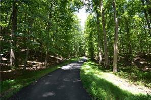 0 Rocky Stream Court, Jasper, GA 30143 (MLS #6089820) :: Path & Post Real Estate