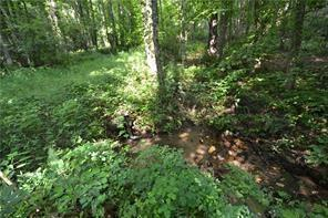 3,4,5 W Hwy 136 Highway, Talking Rock, GA 30175 (MLS #6089830) :: Path & Post Real Estate
