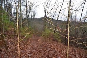00 Henderson Mountain Road, Jasper, GA 30143 (MLS #6090402) :: Ashton Taylor Realty