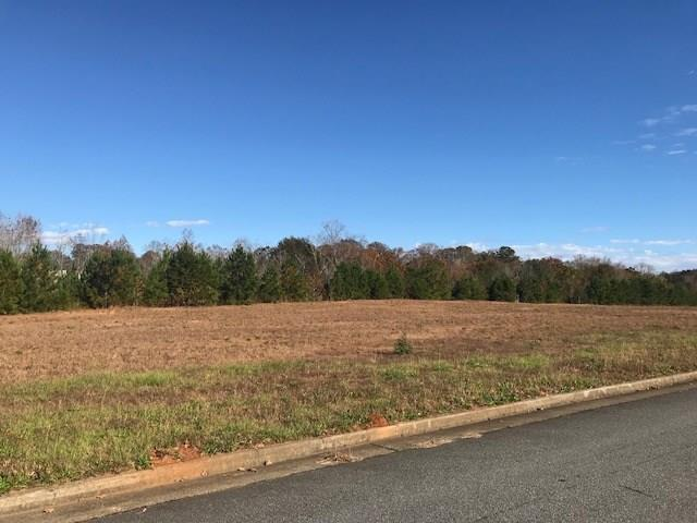 000 Evenflo Drive, Ball Ground, GA 30107 (MLS #6090641) :: Ashton Taylor Realty
