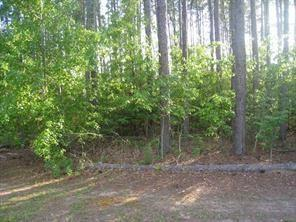 0 Landfill Road, Pelham, GA 31779 (MLS #6092611) :: Iconic Living Real Estate Professionals