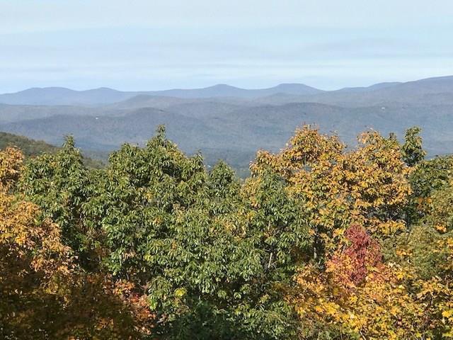1341 Deer Run Ridge - Photo 1