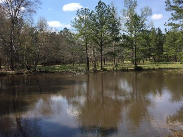 0000 Cliff Nelson Road, Taylorsville, GA 30178 (MLS #6093603) :: Ashton Taylor Realty