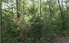 Lot 12 Lazy Springs Road, Blairsville, GA 30512 (MLS #6095102) :: Iconic Living Real Estate Professionals
