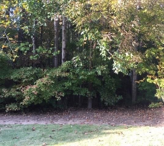 4810 Thornhill Drive NW, Acworth, GA 30101 (MLS #6096119) :: Hollingsworth & Company Real Estate