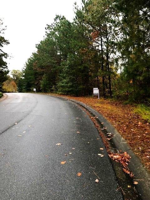 7260 Natures Trail, Cumming, GA 30041 (MLS #6099894) :: North Atlanta Home Team