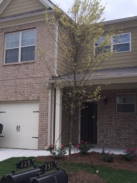 229 Madison Avenue, Acworth, GA 30102 (MLS #6099994) :: Kennesaw Life Real Estate