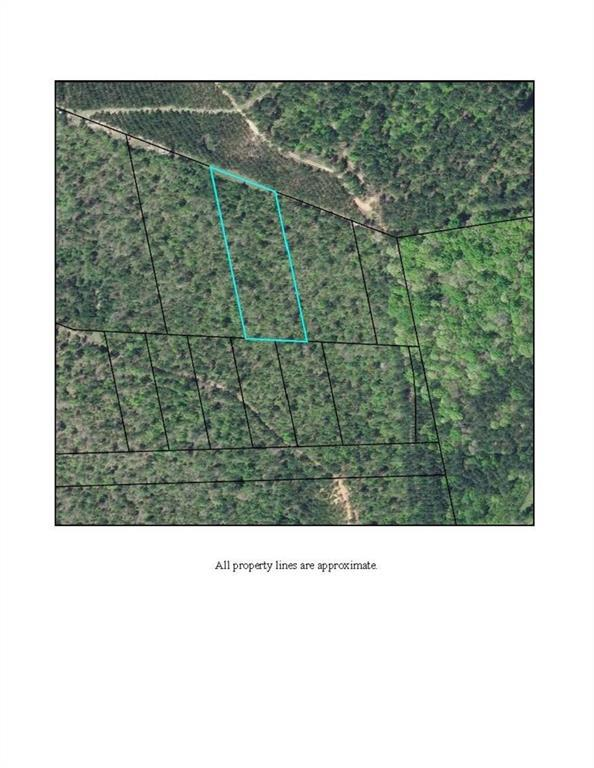 0 Water Tank Road, Crawfordville, GA 30631 (MLS #6100390) :: RE/MAX Paramount Properties