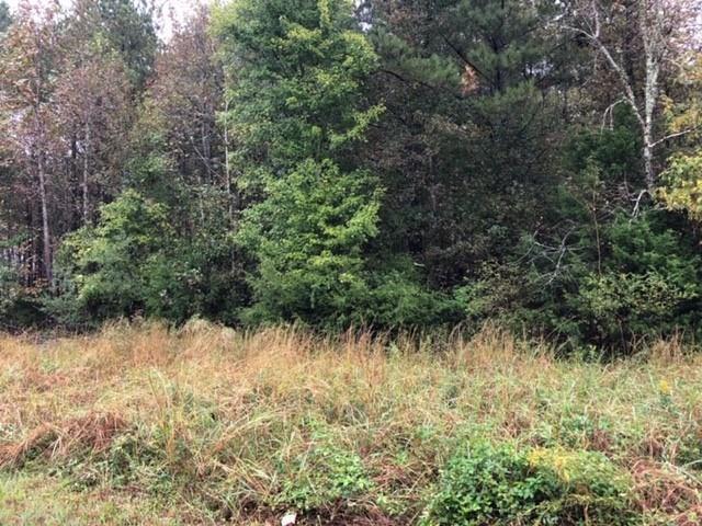 1 Nunnally Farm Road, Monroe, GA 30655 (MLS #6101832) :: Ashton Taylor Realty
