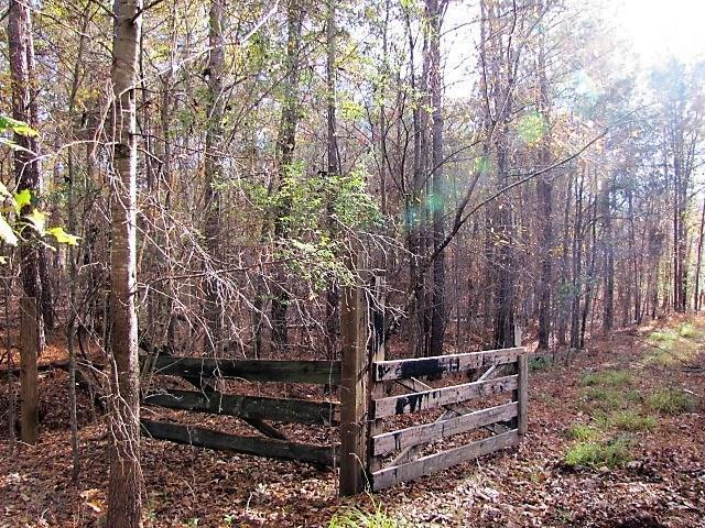 2659 Dennard Road NE, Conyers, GA 30013 (MLS #6107029) :: Rock River Realty