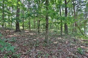 Lot 3 Grant Cove, Dawsonville, GA 30534 (MLS #6109583) :: Dillard and Company Realty Group
