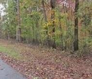 7620 Pine Place, Murrayville, GA 30564 (MLS #6115761) :: Ashton Taylor Realty