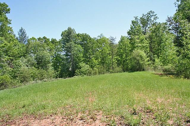 0 Off Of Pink Williams Road, Dahlonega, GA 30533 (MLS #6116488) :: Rock River Realty