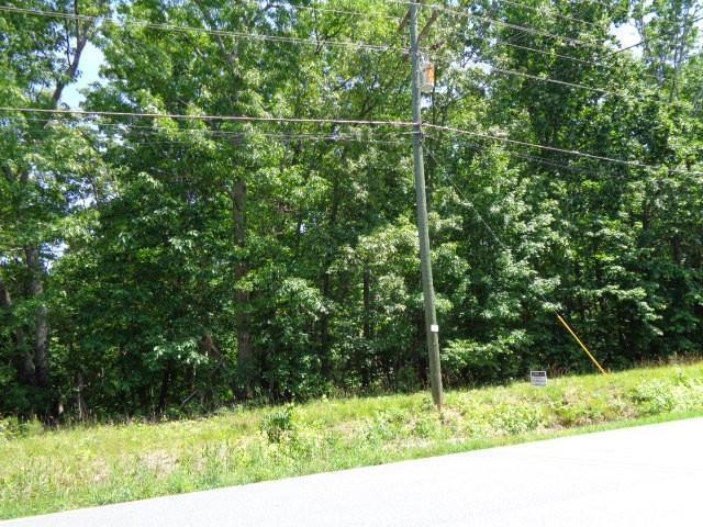 0 Old Douglasville Road - Photo 1