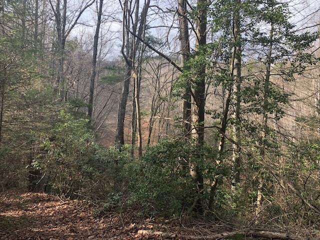 61 Pouncey Cove, Blairsville, GA 30512 (MLS #6121239) :: Path & Post Real Estate