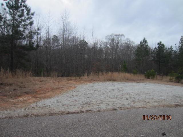 0 Providence Lake Lot 39 Road, Tallapoosa, GA 30176 (MLS #6123482) :: Ashton Taylor Realty