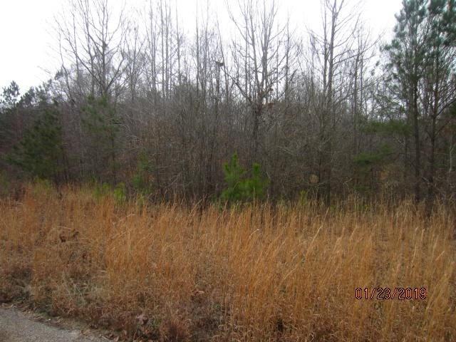 0 Providence Lake Lot 38 Road, Tallapoosa, GA 30176 (MLS #6123483) :: Ashton Taylor Realty