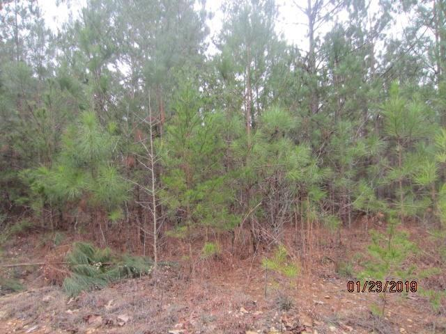 0 Providence Lake Road Lot 47 Annex, Tallapoosa, GA 30176 (MLS #6123507) :: Iconic Living Real Estate Professionals