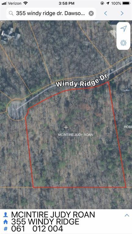 355 Windy Ridge Drive, Dawsonville, GA 30534 (MLS #6124898) :: Iconic Living Real Estate Professionals