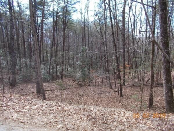 Lot 9 Fireside Ridge, Dahlonega, GA 30533 (MLS #6128988) :: Iconic Living Real Estate Professionals