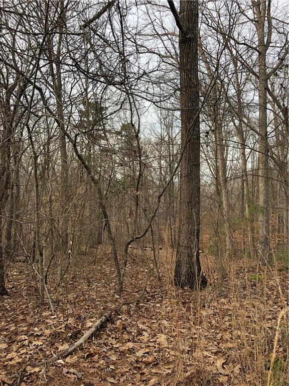 6459 Wildwood Trail, Flowery Branch, GA 30542 (MLS #6519445) :: North Atlanta Home Team