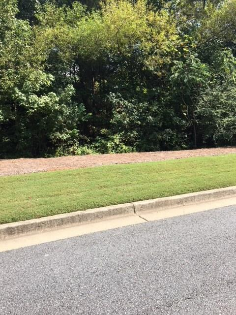 0 Hidden Valley Drive, Canton, GA 30114 (MLS #6521558) :: North Atlanta Home Team