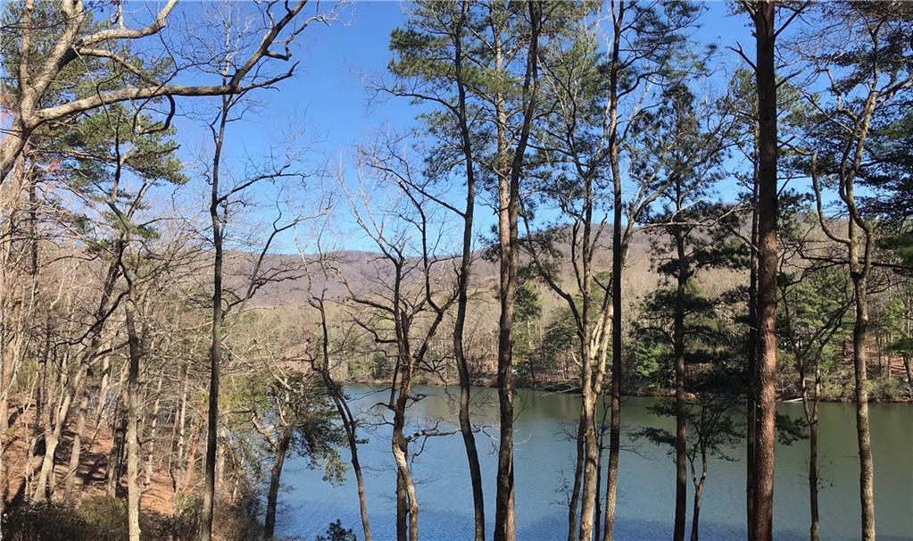 ST 512 Long Swamp Drive - Photo 1