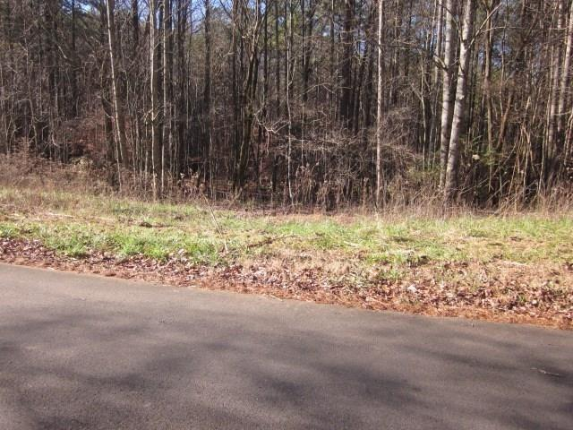 Lot 16 Old Tate Mill Road, Jasper, GA 30143 (MLS #6531777) :: North Atlanta Home Team