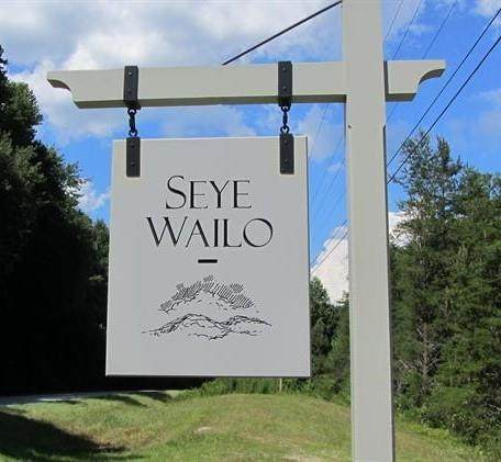 0 Seye Wailo Trail, Clarkesville, GA 30523 (MLS #6532954) :: The Heyl Group at Keller Williams