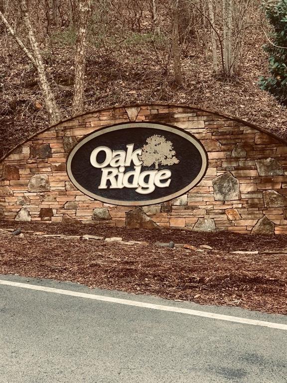 Lot 1 Oak Ridge Parkway, Jasper, GA 30143 (MLS #6537294) :: North Atlanta Home Team