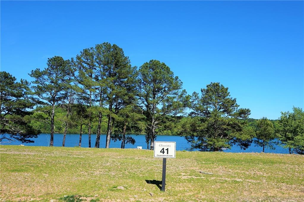 570 Clearwater Landing - Photo 1