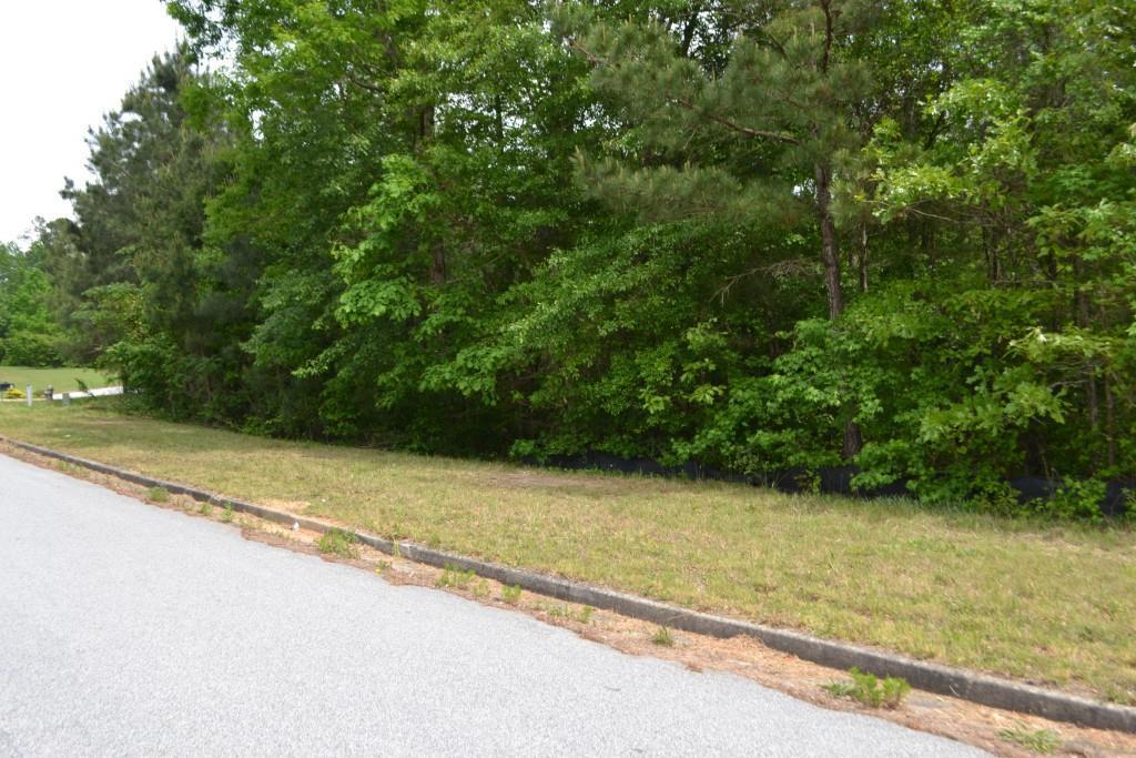 9055 Keaton Creek Drive - Photo 1