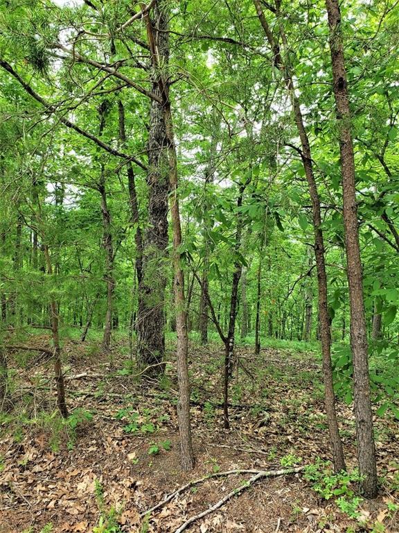 1386 Fox Hound Trail NE, Ranger, GA 30734 (MLS #6548507) :: North Atlanta Home Team
