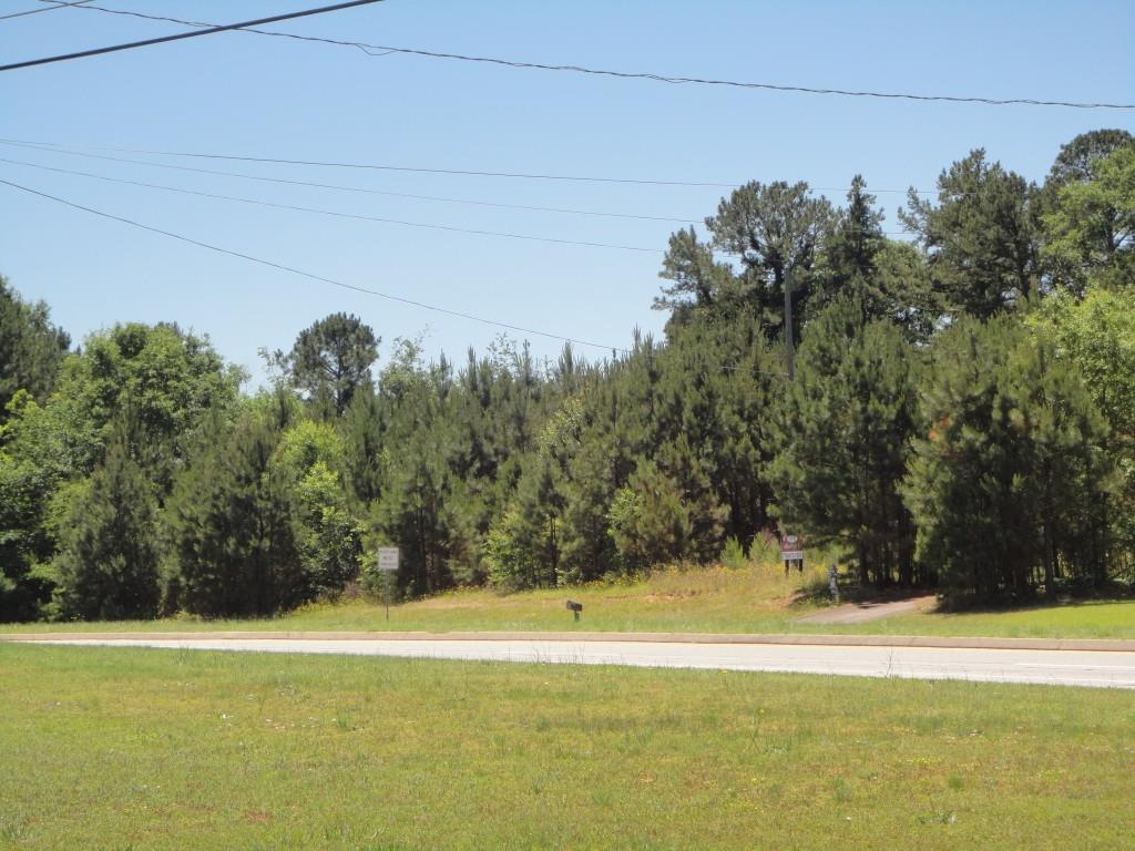 1091 Grayson Highway - Photo 1