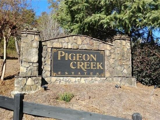 493 Pigeon Creek Drive, Dawsonville, GA 30534 (MLS #6553957) :: The Zac Team @ RE/MAX Metro Atlanta