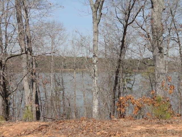 1345 Shimmering Water Cove, Tignall, GA 30668 (MLS #6554614) :: North Atlanta Home Team