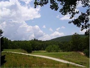 Lt 419 Cherokee Drive - Photo 1