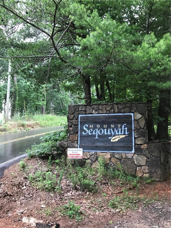 01 Mount Sequoyah Road, Jasper, GA 30143 (MLS #6572066) :: The Heyl Group at Keller Williams